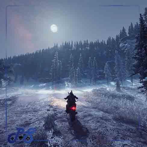 خرید بازی Days Gone ریجن all برای PS4 پلمپ
